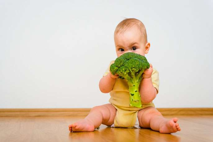 Baby on board- here is what you need to know about your baby's food and development